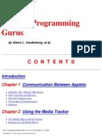 Tricks of the Java Programming Gurus