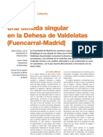I2 Una Olmeda Singular en La Dehesa de Valdelatas Fuencarral Madrid
