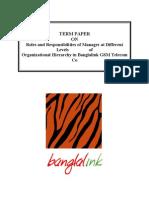 Banglalink termpaper from Salehin