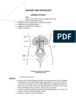Kidney Anatomy and Physiology