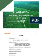 Biocombustible_Palmas Del Espino