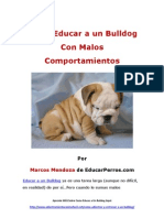 Como Educar a Un Bulldog Con Malos Comportamientos