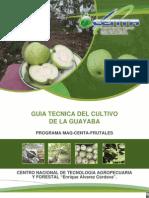 CENTA Guia Tecnica Del Cultivo de Guayaba