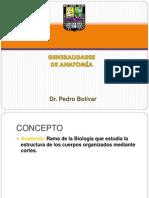 1Generalidades de Anatomia y Osteologia DR BOLIVAR-1