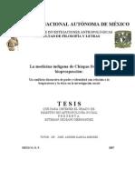 LA MEDICINA INDÍGENA DE CHIAPAS FRENTE A LA BIOPROSPECCIÓN