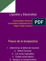 RED Líquidos y Electrolitos