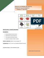 Determinacion de Grupos Sanguineos(1)
