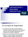 Organic Id Ad y Madurez Perceptual 1