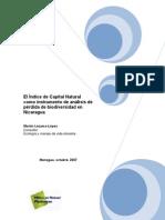 Report+ +Lezama Lopez+(2007)+El+Indice+de+Capital+Natural+Co