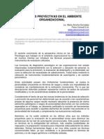 Pruebas Proyectivas en Ambiente Organizacional