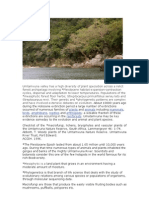 Umtamvuna Valley Nature Reserve - Day 5