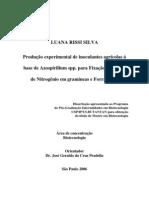 Produção experimental de inoculantes a base de Azospirillum para FBN