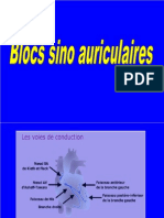 09 - Blocs Sino Auriculaire