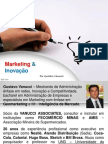 Pelestra de Marketing e Inovação - Plug Minas 2012