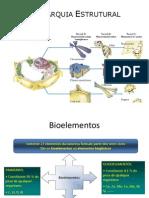 Biologia Celular - Introdução