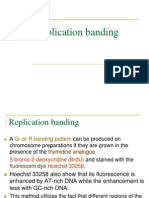 Replication Banding