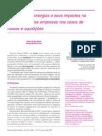 A geração de sinergias e seus impactos na rentabilidade das empresas. MATIAS; PASSIN