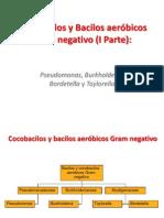 Cocobacilos y Bacilos Aerobios Gramnegativo (I Parte)