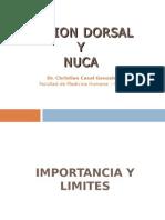 11 Region Dorsal y Nuca
