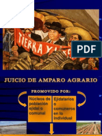 Amparo Agrario en Mexico