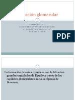 -filtracion-glomerular