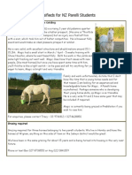Classifieds for NZ Parelli Students Aug 2012