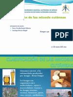 CLASIFICACIÓN DE LAS MICOSIS CUTÁNEAS