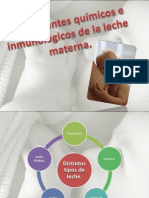 7.3 - Constitucion de La Leche Materna