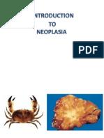 Neoplasia Pp t