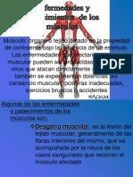 12LESIONES MUSCULARES