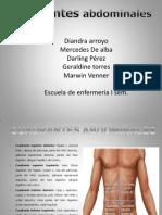cuadrantes abdominales