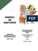Manual de Anatomia Sena_docx