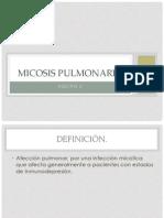 Micosis pulmonares (2)