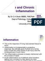 Acute and Chronic Inflammation
