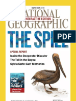 National Geographic Interactive 2010-10