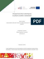 Raport Koncowy Strategia Komunikacji Marketingowej Na Rynkach Szwedzkim i Holenderskim