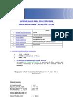 Informe Diario Onemi Magallanes 13.08