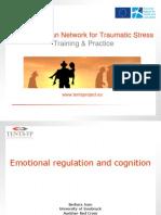 121Emotional Regulation and Cognition