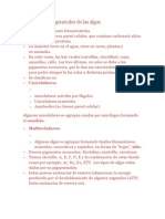 Características generales de las algas