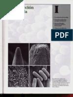 Alberts Bruce - Biologia Molecular de La Celula - Parte 1 - Introduccion a La Celula