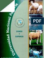 Manual de Chivas