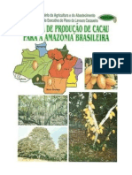sistema de produção do cacau na amazonia