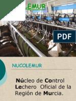 nucolemur