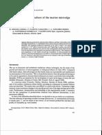 Outdoor Turbidostat Culture of the Marine Microalga