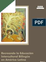Páginas desdeRecreando la EIB en América Latina Tomo 1 web