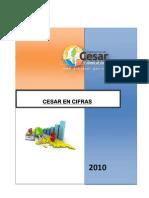 CIFRAS 2010