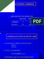 EVOLUCIÓN DEL SECTOR CAPRINO EN LA REGIÓN DE MURCIA (1986-2000) Adolfo Falagan ppt