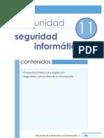 11. Seguridad Informatica