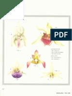 Orchidaceae Brasilienses - Pabst Vol 2 Part20