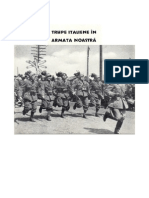 1943 Italian Corps in Russia CSIR as Seen by Rumanians